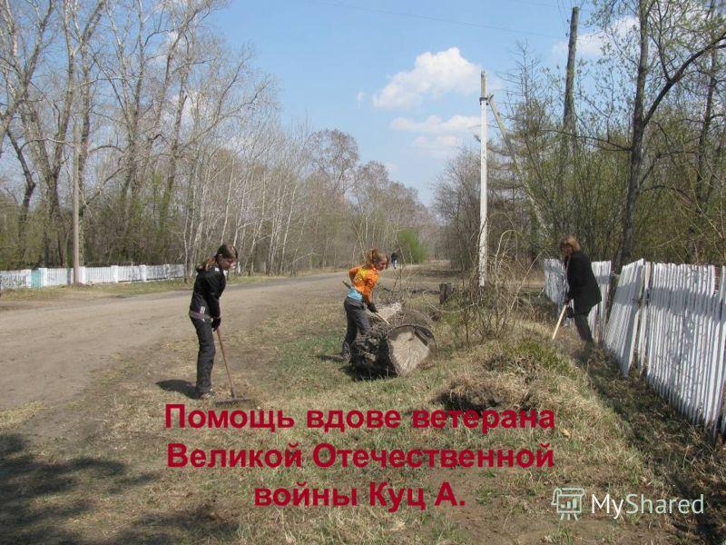 Помощь вдове ветерана Великой Отечественной войны Куц А.
