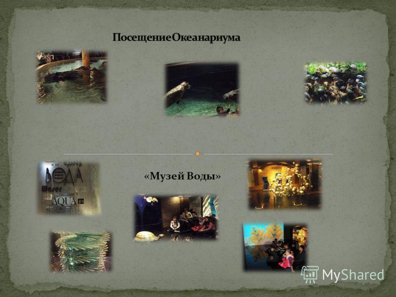 «Музей Воды»