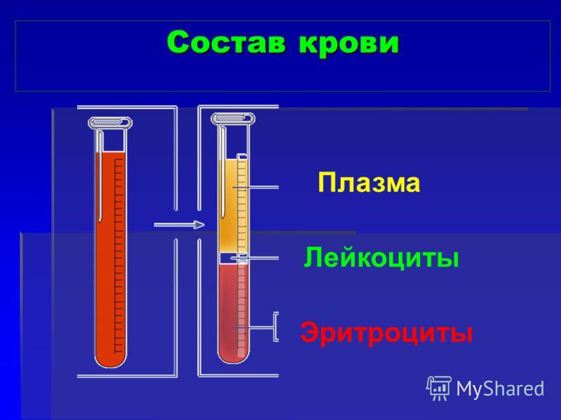 Состав крови Плазма Лейкоциты Эритроциты