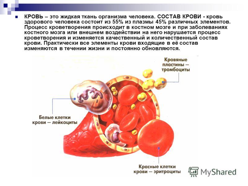 КРОВЬ – это жидкая ткань организма человека. СОСТАВ КРОВИ - кровь здорового человека состоит из 55% из плазмы 45% различных элементов. Процесс кроветворения происходит в костном мозге и при заболеваниях костного мозга или внешнем воздействии на него
