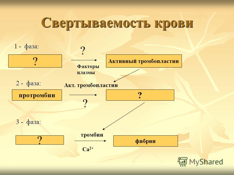 Свертываемость крови 1 - фаза: ? Активный тромбопластин 2 - фаза: протромбин ? 3 - фаза: ? фибрин ? Факторы плазмы ? Акт. тромбопластин Са 2+ тромбин