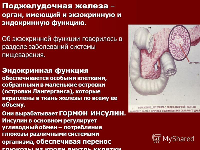 Поджелудочная железа – орган, имеющий и экзокринную и эндокринную функцию. Об экзокринной функции говорилось в разделе заболеваний системы пищеварения. Эндокринная функция обеспечивается особыми клетками, собранными в маленькие островки (островки Лан