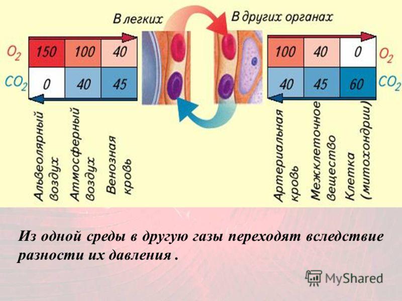 Из одной среды в другую газы переходят вследствие разности их давления.