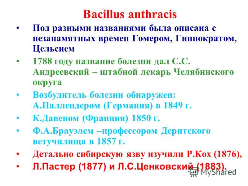 Bacillus anthracis Под разными названиями была описана с незапамятных времен Гомером, Гиппократом, Цельсием 1788 году название болезни дал С.С. Андреевский – штабной лекарь Челябинского округа Возбудитель болезни обнаружен: А.Паллендером (Германия) в