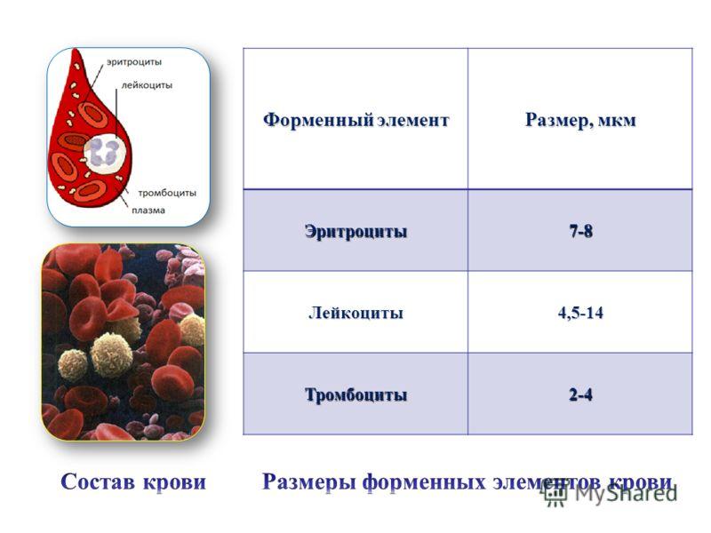 Форменный элемент Размер, мкм Эритроциты7-8 Лейкоциты4,5-14 Тромбоциты2-4
