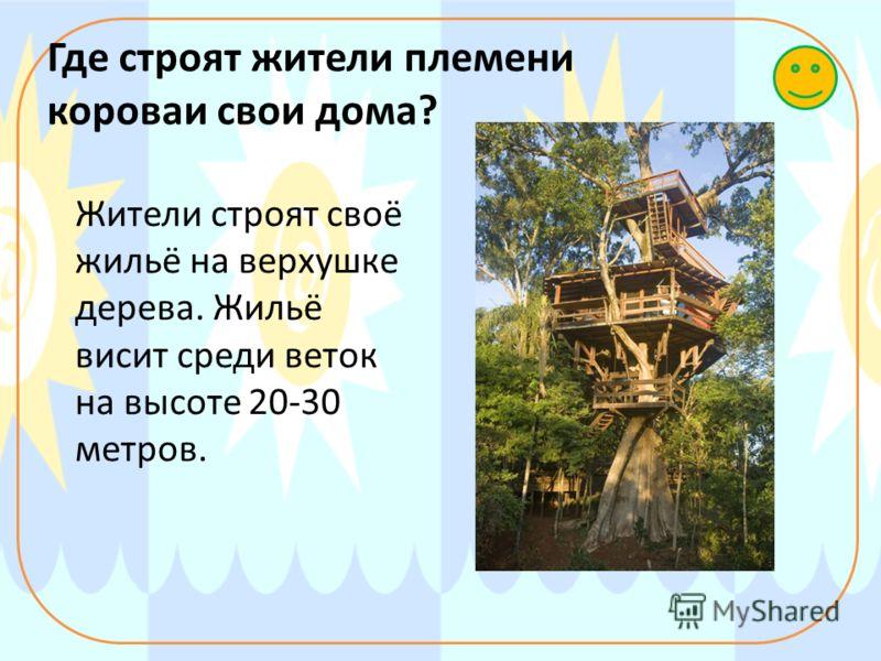 Где строят жители племени короваи свои дома? Жители строят своё жильё на верхушке дерева. Жильё висит среди веток на высоте 20-30 метров.