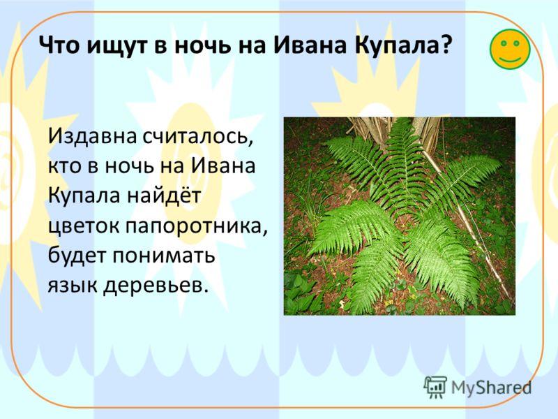 Что ищут в ночь на Ивана Купала? Издавна считалось, кто в ночь на Ивана Купала найдёт цветок папоротника, будет понимать язык деревьев.
