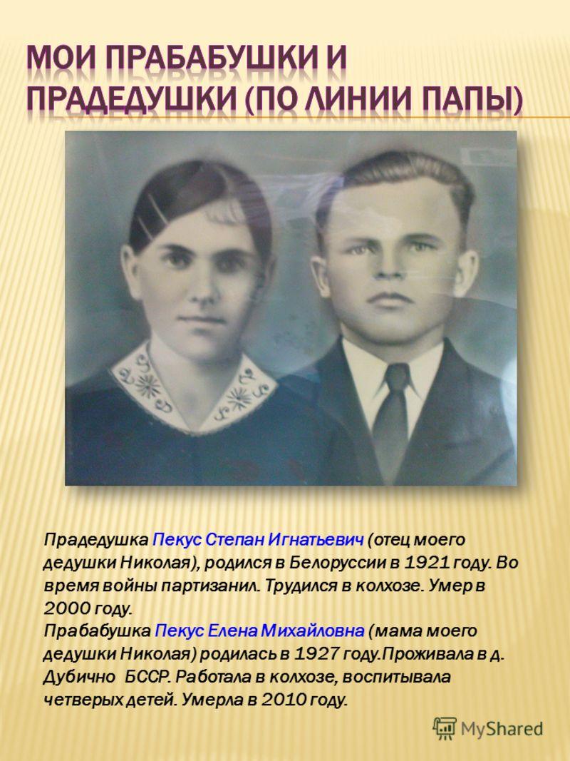 Прадедушка Пекус Степан Игнатьевич (отец моего дедушки Николая), родился в Белоруссии в 1921 году. Во время войны партизанил. Трудился в колхозе. Умер в 2000 году. Прабабушка Пекус Елена Михайловна (мама моего дедушки Николая) родилась в 1927 году.Пр