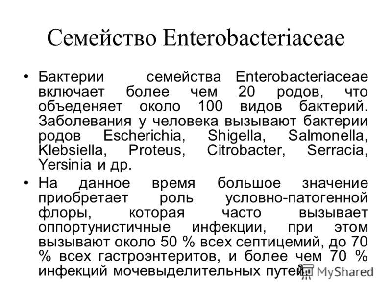 Семейство Enterobacteriaceae Бактерии семейства Enterobacteriaceae включает более чем 20 родов, что объеденяет около 100 видов бактерий. Заболевания у человека вызывают бактерии родов Escherichia, Shigella, Salmonella, Klebsiella, Proteus, Citrobacte