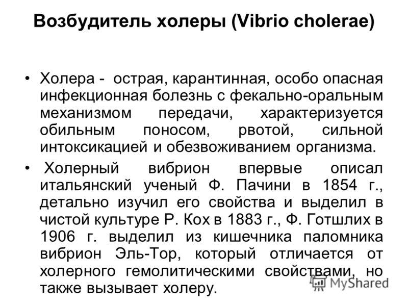 Возбудитель холеры (Vibrio cholerae) Холера - острая, карантинная, особо опасная инфекционная болезнь с фекально-оральным механизмом передачи, характеризуется обильным поносом, рвотой, сильной интоксикацией и обезвоживанием организма. Холерный вибрио