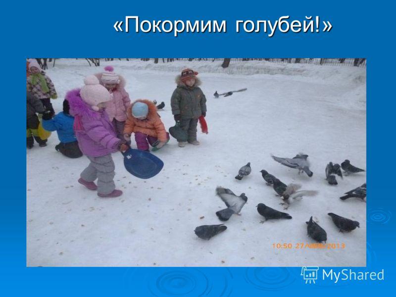 «Покормим голубей!» «Покормим голубей!»