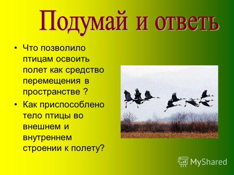 Что позволило птицам освоить полет как средство перемещения в пространстве ? Как приспособлено тело птицы во внешнем и внутреннем строении к полету?