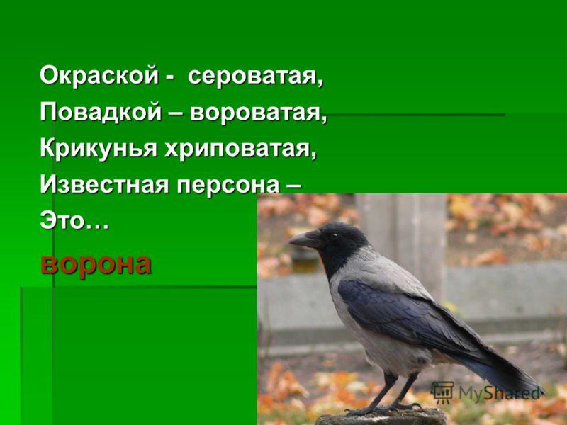 Окраской - сероватая, Повадкой – вороватая, Крикунья хриповатая, Известная персона – Это…ворона