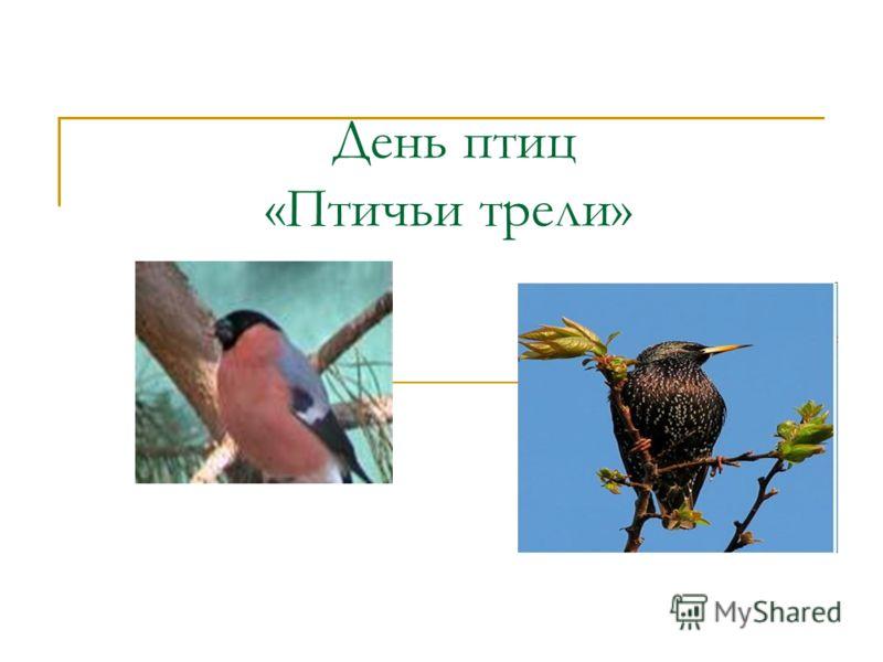 День птиц «Птичьи трели»