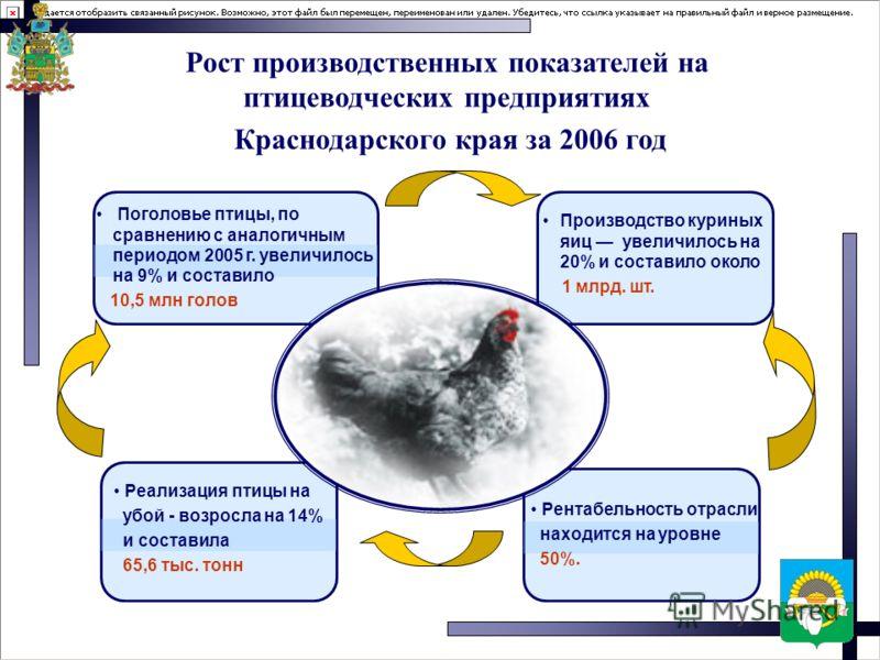 Рост производственных показателей на птицеводческих предприятиях Краснодарского края за 2006 год Поголовье птицы, по сравнению с аналогичным периодом 2005 г. увеличилось на 9% и составило 10,5 млн голов Производство куриных яиц увеличилось на 20% и с