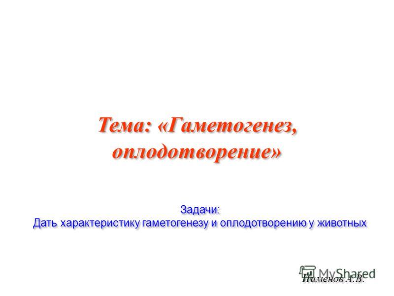 Тема: «Гаметогенез, оплодотворение» Пименов А.В. Задачи: Дать характеристику гаметогенезу и оплодотворению у животных Задачи: Дать характеристику гаметогенезу и оплодотворению у животных