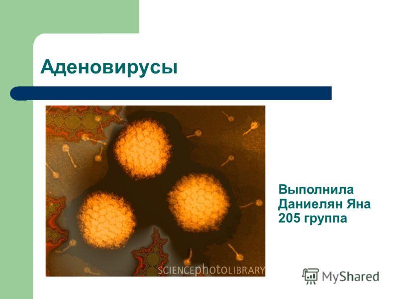 Аденовирусы Выполнила Даниелян Яна 205 группа