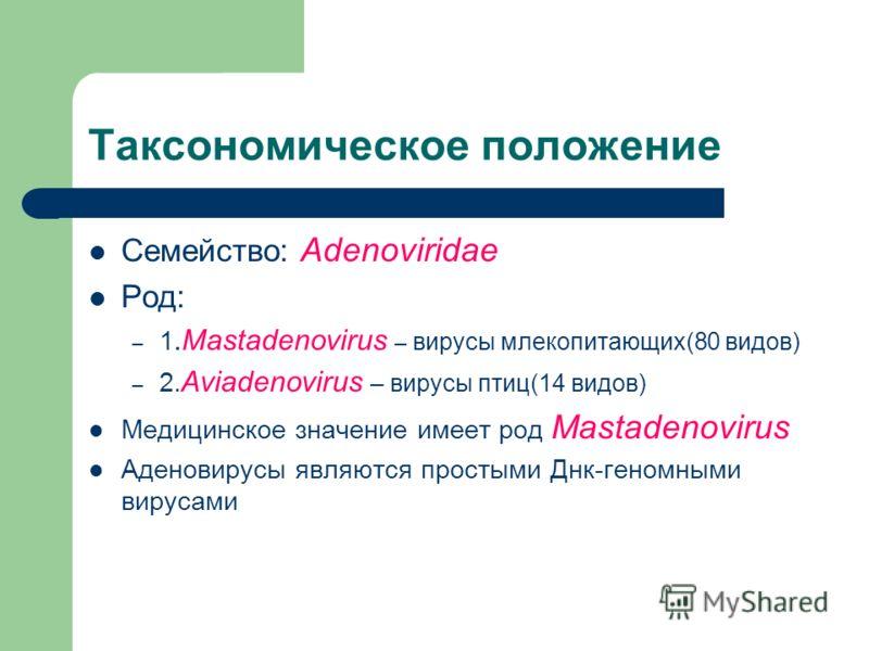Таксономическое положение Семейство: Adenoviridae Род: – 1.Mastadenovirus – вирусы млекопитающих(80 видов) – 2. Aviadenovirus – вирусы птиц(14 видов) Медицинское значение имеет род Mastadenovirus Аденовирусы являются простыми Днк-геномными вирусами