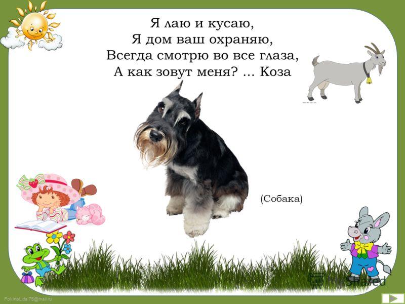 FokinaLida.75@mail.ru Я мяукать не боюсь, Коготками я дерусь, Зря меня ты не пугай! Кто задира?... Попугай (Кошка)