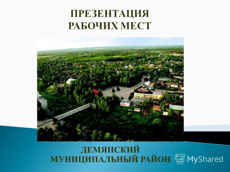 ДЕМЯНСКИЙ МУНИЦИПАЛЬНЫЙ РАЙОН