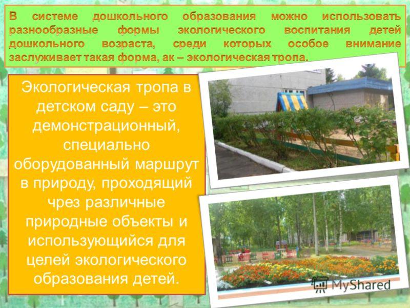Экологическая тропа в детском саду – это демонстрационный, специально оборудованный маршрут в природу, проходящий чрез различные природные объекты и использующийся для целей экологического образования детей.