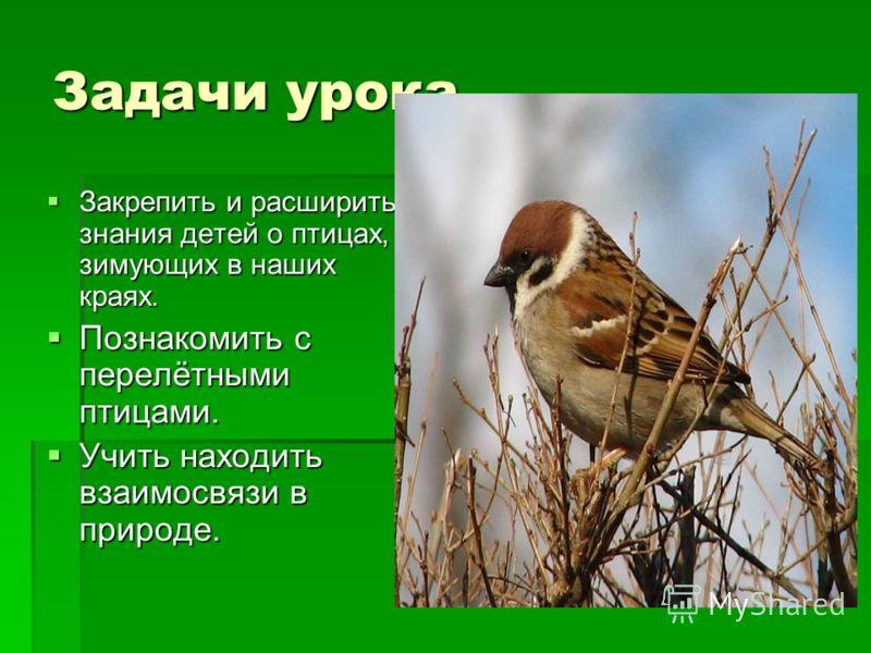 Задачи урока. Закрепить и расширить знания детей о птицах, зимующих в наших краях. Закрепить и расширить знания детей о птицах, зимующих в наших краях. Познакомить с перелётными птицами. Познакомить с перелётными птицами. Учить находить взаимосвязи в