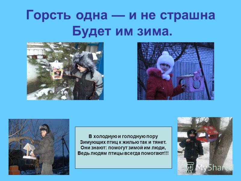 Горсть одна и не страшна Будет им зима. В холодную и голодную пору Зимующих птиц к жилью так и тянет. Они знают: помогут зимой им люди, Ведь людям птицы всегда помогают!!!