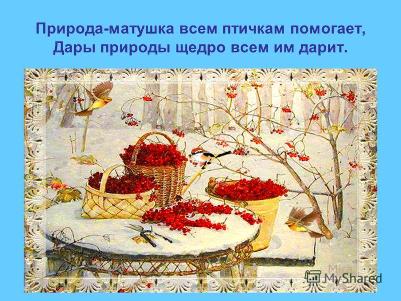 Природа-матушка всем птичкам помогает, Дары природы щедро всем им дарит.