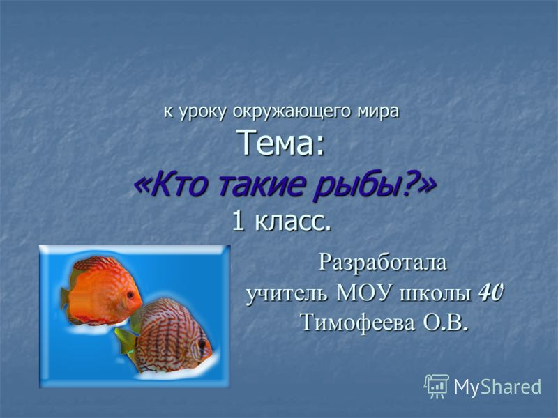 к уроку окружающего мира Тема: «Кто такие рыбы?» 1 класс. Разработала учитель МОУ школы 40 Тимофеева О. В.