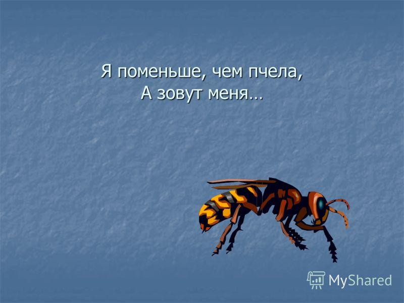 Я поменьше, чем пчела, А зовут меня…