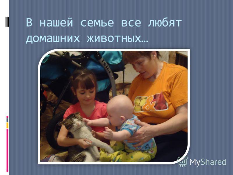 В нашей семье все любят домашних животных…