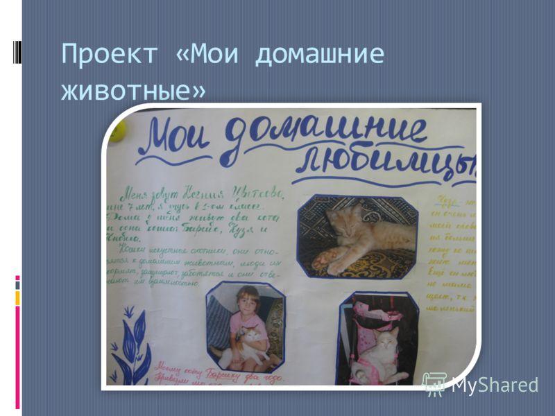 Проект «Мои домашние животные»