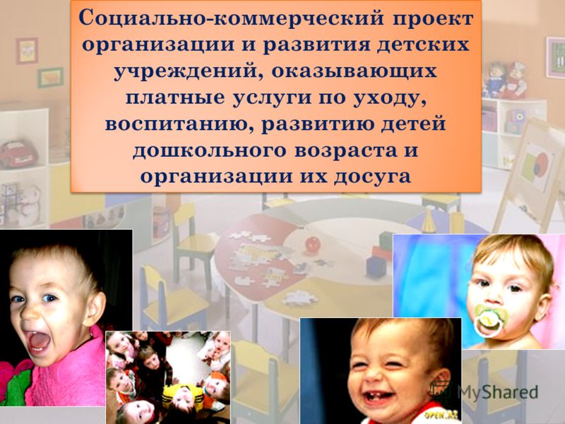 Социально-коммерческий проект организации и развития детских учреждений, оказывающих платные услуги по уходу, воспитанию, развитию детей дошкольного возраста и организации их досуга