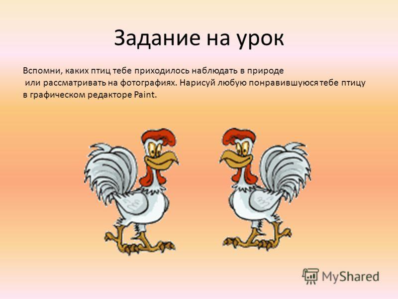 Задание на урок Вспомни, каких птиц тебе приходилось наблюдать в природе или рассматривать на фотографиях. Нарисуй любую понравившуюся тебе птицу в графическом редакторе Paint.