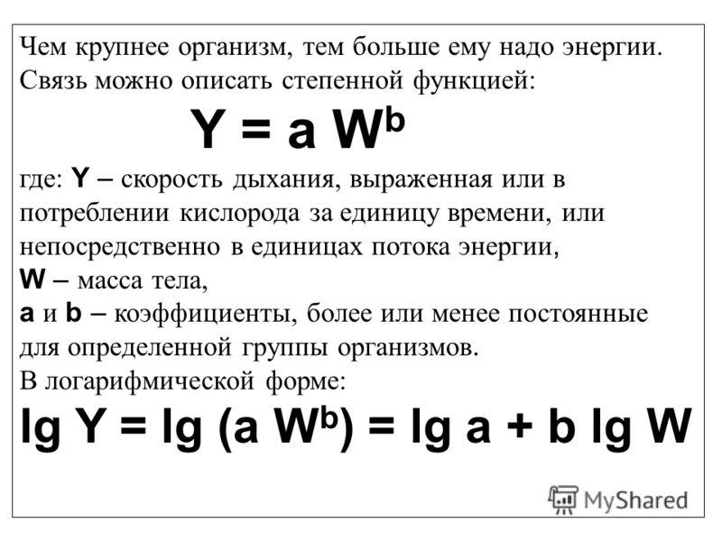 Чем крупнее организм, тем больше ему надо энергии. Связь можно описать степенной функцией: Y = a W b где: Y – скорость дыхания, выраженная или в потреблении кислорода за единицу времени, или непосредственно в единицах потока энергии, W – масса тела,