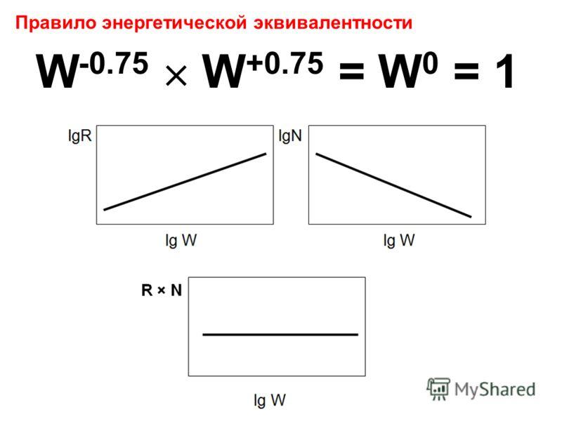 Правило энергетической эквивалентности W -0.75 W +0.75 = W 0 = 1