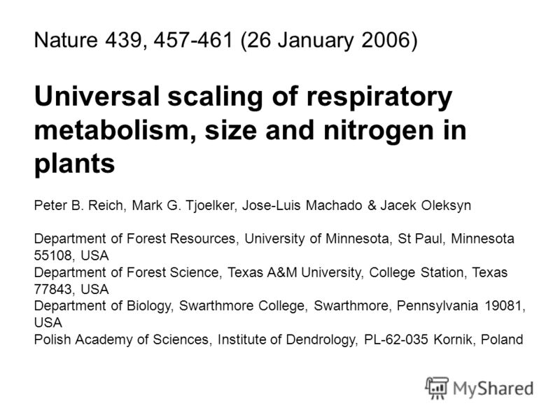 Nature 439, 457-461 (26 January 2006) Universal scaling of respiratory metabolism, size and nitrogen in plants Peter B. Reich, Mark G. Tjoelker, Jose-Luis Machado & Jacek Oleksyn Department of Forest Resources, University of Minnesota, St Paul, Minne