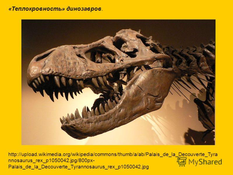 «Теплокровность» динозавров. http://upload.wikimedia.org/wikipedia/commons/thumb/a/ab/Palais_de_la_Decouverte_Tyra nnosaurus_rex_p1050042.jpg/800px- Palais_de_la_Decouverte_Tyrannosaurus_rex_p1050042.jpg