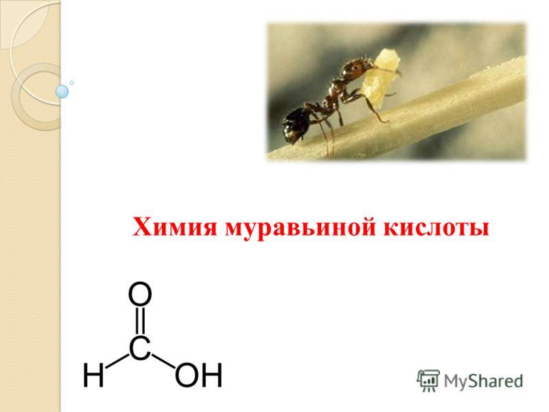 Химия муравьиной кислоты