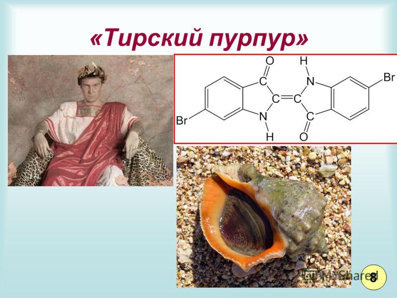 «Тирский пурпур» 8