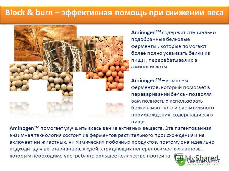 Block & burn – эффективная помощь при снижении веса Aminogen TM содержит специально подобранные белковые ферменты, которые помогают более полно усваивать белки из пищи, перерабатывая их в аминокислоты. Aminogen TM – комплекс ферментов, который помога