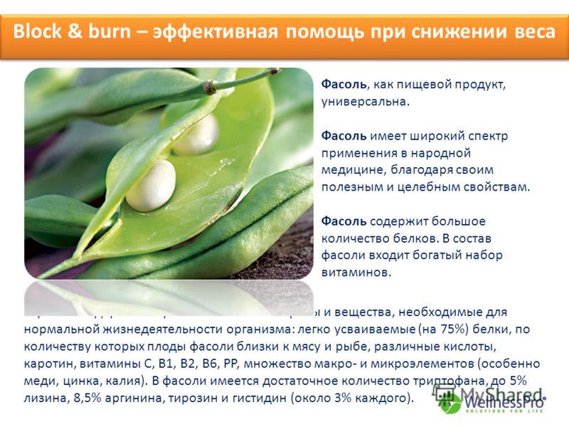 Block & burn – эффективная помощь при снижении веса Фасоль, как пищевой продукт, универсальна. Фасоль имеет широкий спектр применения в народной медицине, благодаря своим полезным и целебным свойствам. Фасоль содержит большое количество белков. В сос