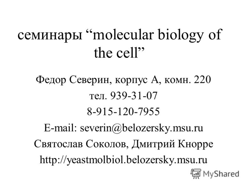 семинары molecular biology of the cell Федор Северин, корпус А, комн. 220 тел. 939-31-07 8-915-120-7955 E-mail: severin@belozersky.msu.ru Святослав Соколов, Дмитрий Кнорре http://yeastmolbiol.belozersky.msu.ru