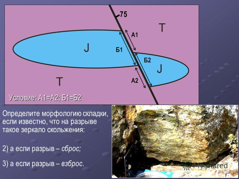 Определите морфологию складки, если известно, что на разрыве такое зеркало скольжения: А1 А2 Б2 Б1 75 2) а если разрыв – сброс; 3) а если разрыв – взброс. Условие: А1=А2; Б1=Б2