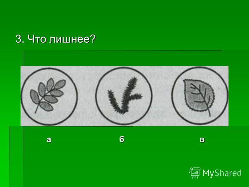 3. Что лишнее? абв