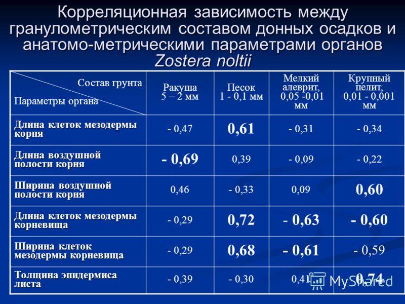Корреляционная зависимость между гранулометрическим составом донных осадков и анатомо-метрическими параметрами органов Zostera noltii Состав грунта Параметры органа Ракуша 5 – 2 мм Песок 1 - 0,1 мм Мелкий алеврит, 0,05 -0,01 мм Крупный пелит, 0,01 -