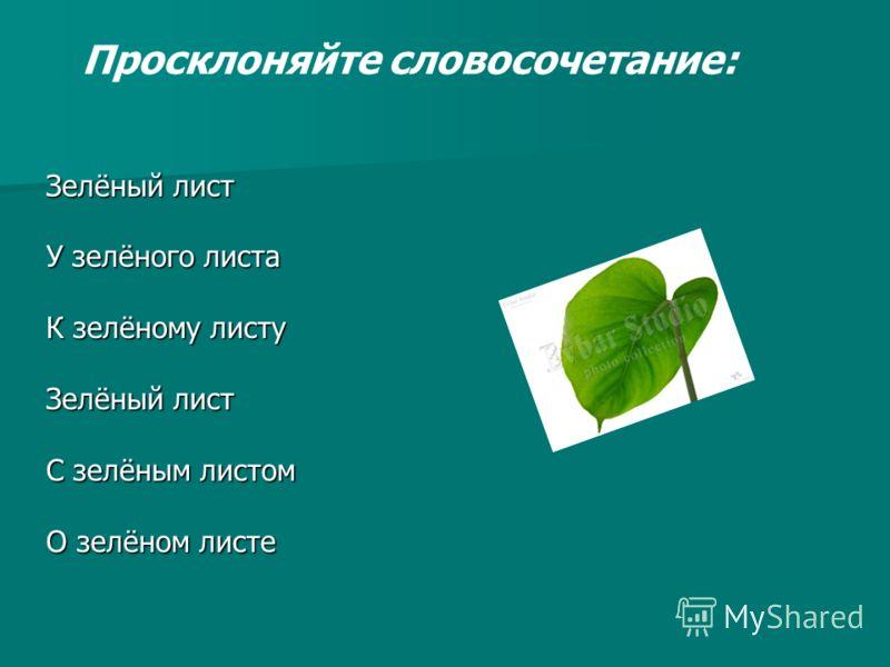 Зелёный лист У зелёного листа К зелёному листу Зелёный лист С зелёным листом О зелёном листе Просклоняйте словосочетание: