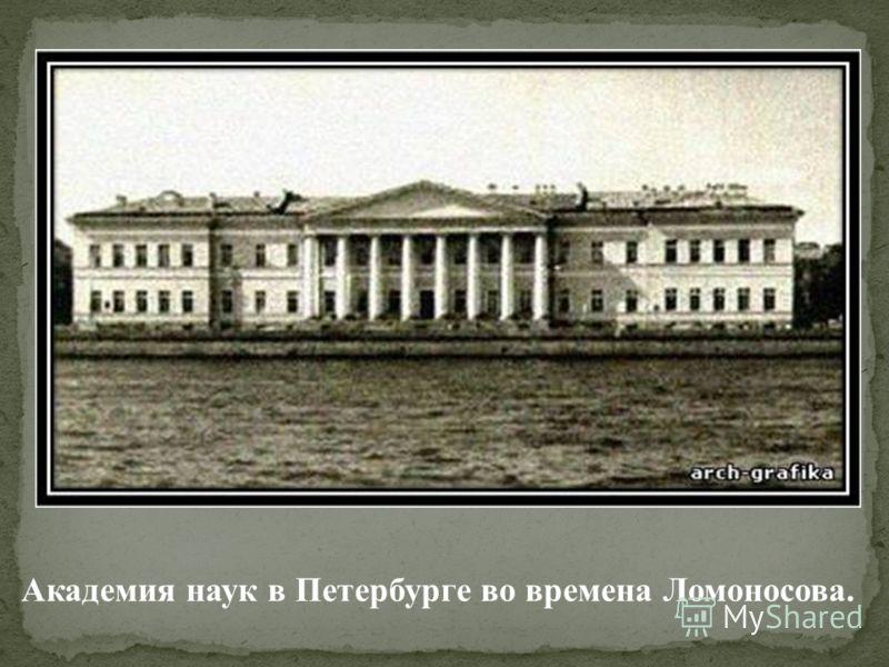 Академия наук в Петербурге во времена Ломоносова.