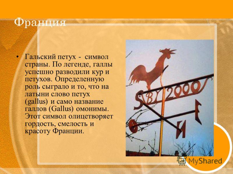 Франция Гальский петух - символ страны. По легенде, галлы успешно разводили кур и петухов. Определенную роль сыграло и то, что на латыни слово петух (gallus) и само название галлов (Gallus) омонимы. Этот символ олицетворяет гордость, смелость и красо