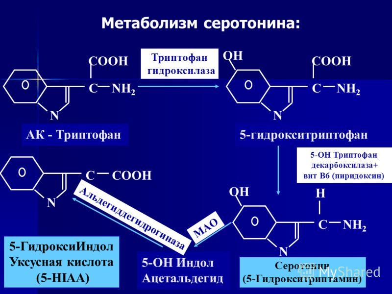 N C N CNH 2 COOH NH 2 OH N CNH 2 OH H АК - Триптофан5-гидрокситриптофан Серотонин (5-Гидрокситриптамин) N CCOOH 5-OH Индол Ацетальдегид 5-ГидроксиИндол Уксусная кислота (5-HIAA) Триптофан гидроксилаза 5-OH Триптофан декарбоксилаза+ вит В6 (пиридоксин